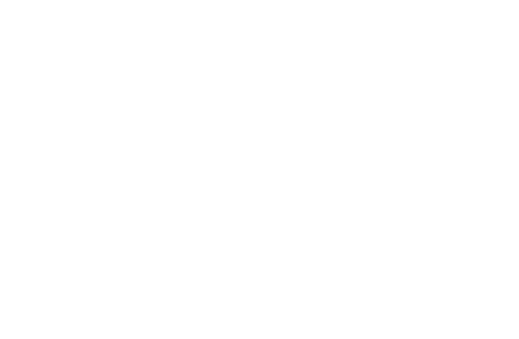 Warriors for Autism logo
