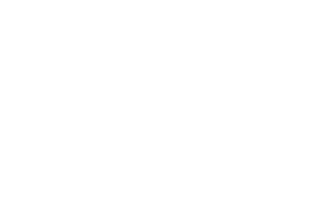 World Care logo