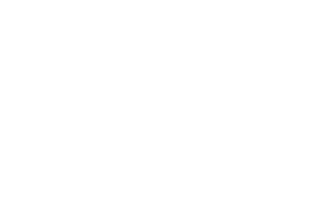 Project Big Love logo