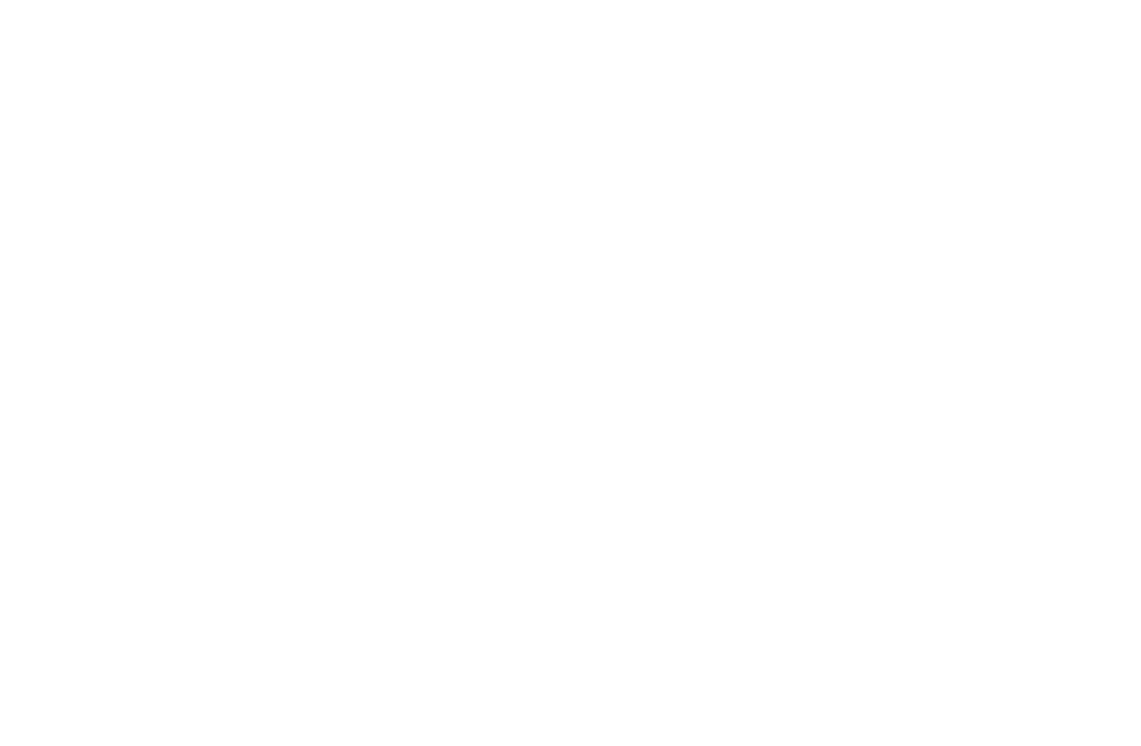 Doc Wayne Youth Services logo