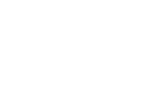 4 2 20 Foundation logo