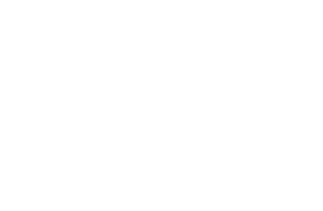 The Article 20 Network logo
