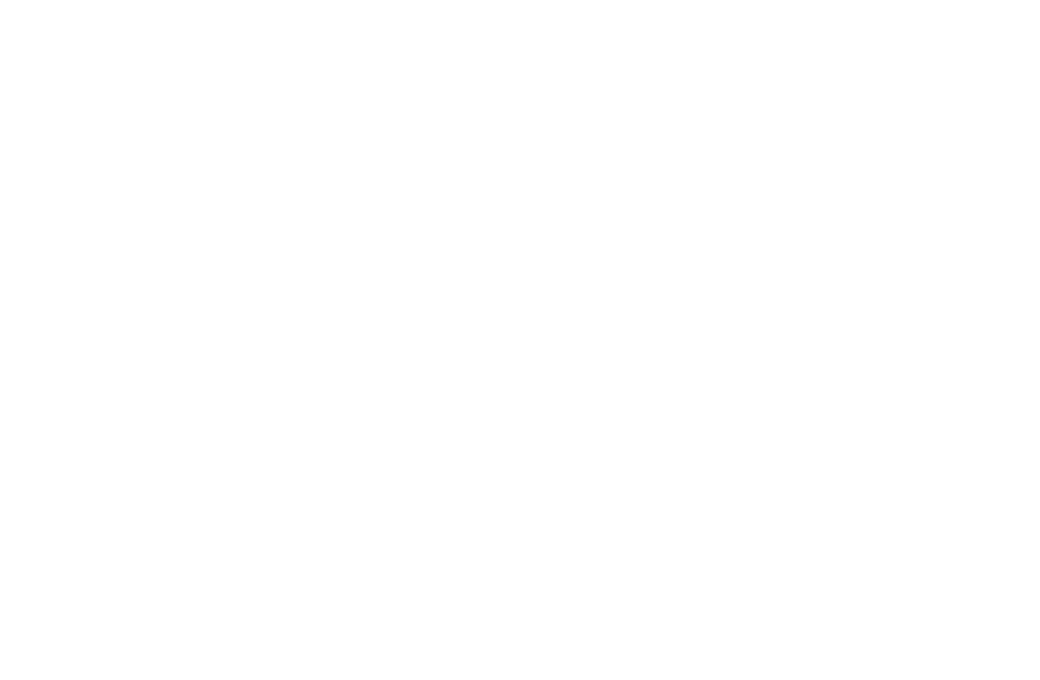 True Colors Fund logo