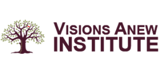 Visions Anew Institute logo