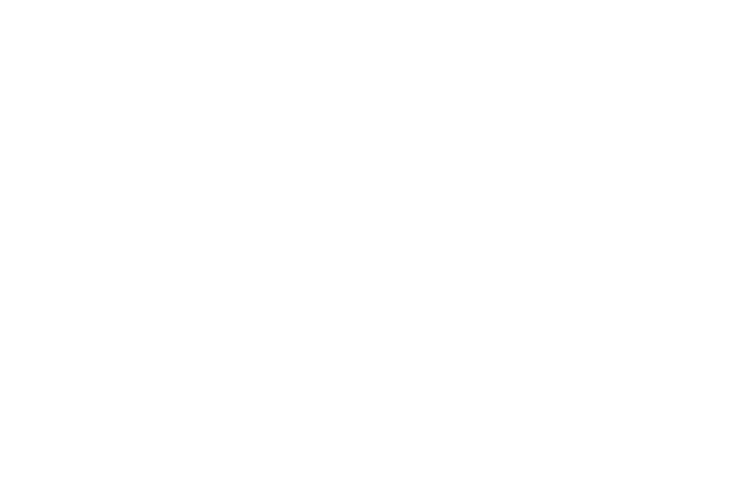 Women of the World logo