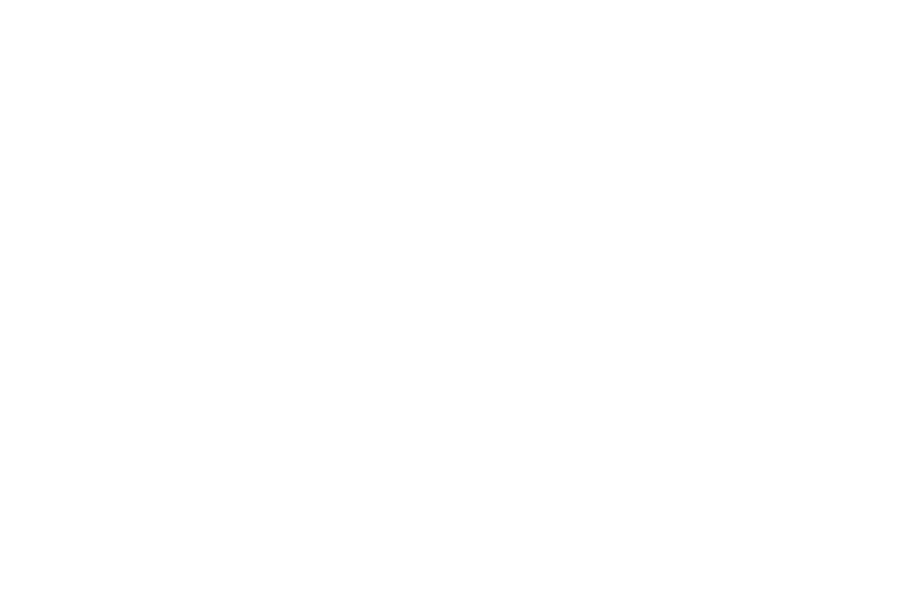 Immune Deficiency Foundation logo