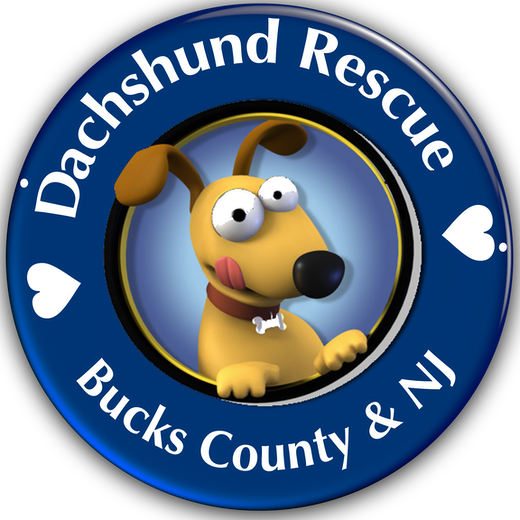 Doxie Rescue of Bucks logo