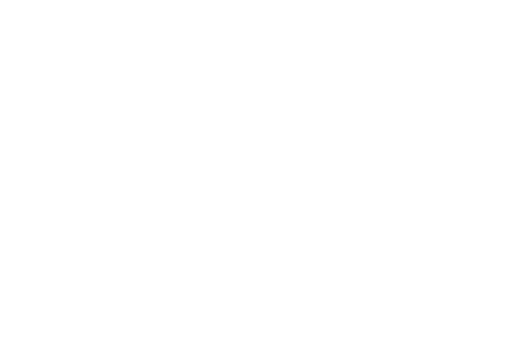 Brain Injury Association of Arizona logo
